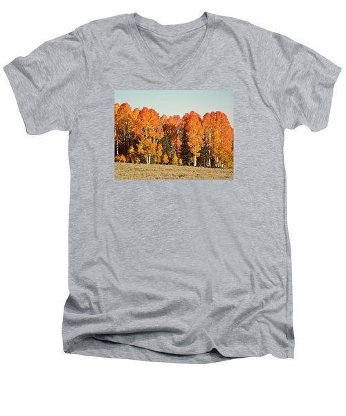 Aspen Forest In Autumn Men's V-Neck T-Shirt