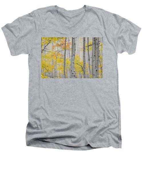 Aspen Forest Texture Men's V-Neck T-Shirt