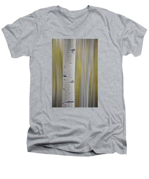 Aspen Men's V-Neck T-Shirt