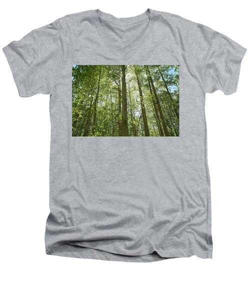 Aspen Green Men's V-Neck T-Shirt by Eric Glaser