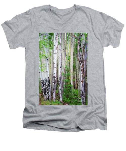 Aspen Grove In The White Mountains Men's V-Neck T-Shirt