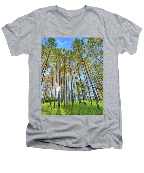 Aspen Grove Men's V-Neck T-Shirt