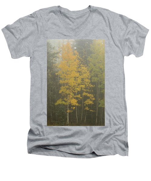 Aspen In The Fog Men's V-Neck T-Shirt