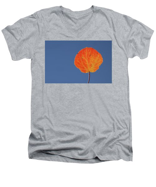 Aspen Leaf 1 Men's V-Neck T-Shirt