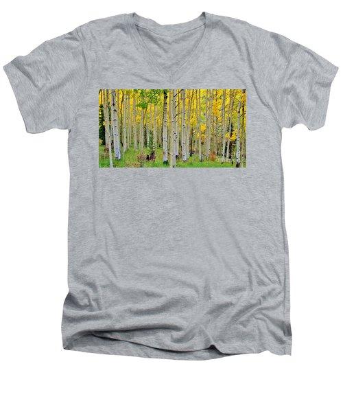 Aspen Slope Men's V-Neck T-Shirt