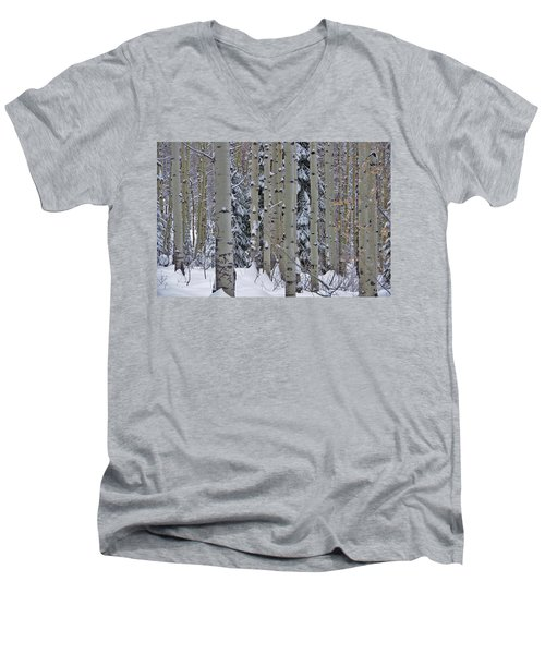 Aspen Snow Men's V-Neck T-Shirt