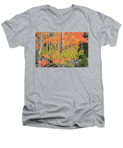 Aspen Stoplight Men's V-Neck T-Shirt