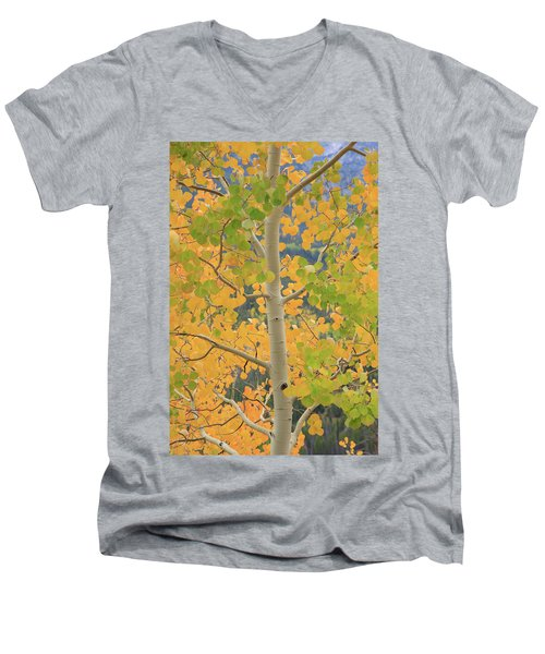 Men's V-Neck T-Shirt featuring the photograph Aspen Watching You by David Chandler