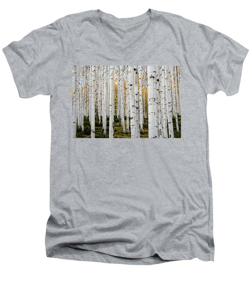 Men's V-Neck T-Shirt featuring the photograph Aspens And Gold by Stephen Holst