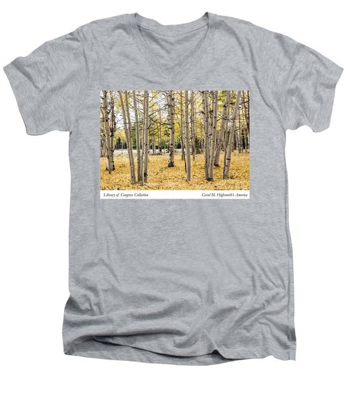 Men's V-Neck T-Shirt featuring the photograph Aspens In Conejos County In Colorado, Near The New Mexico Border by Carol M Highsmith