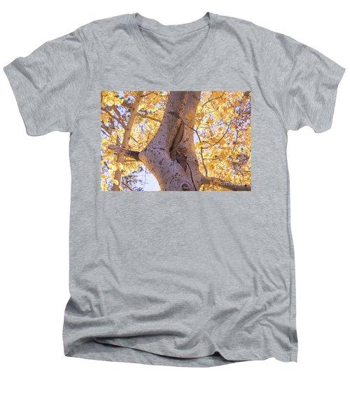 Aspens  Men's V-Neck T-Shirt