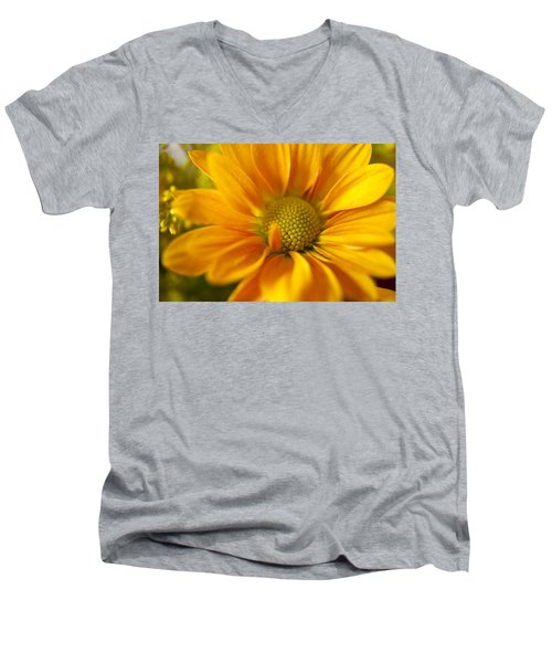 Aster Close Up Men's V-Neck T-Shirt