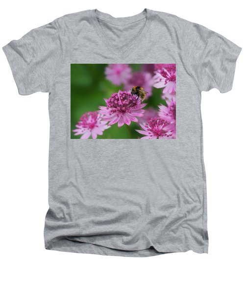 Pollination Men's V-Neck T-Shirt by Shirley Mitchell