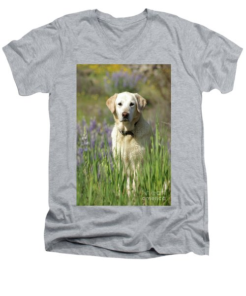 Men's V-Neck T-Shirt featuring the photograph At Attention by Jim and Emily Bush