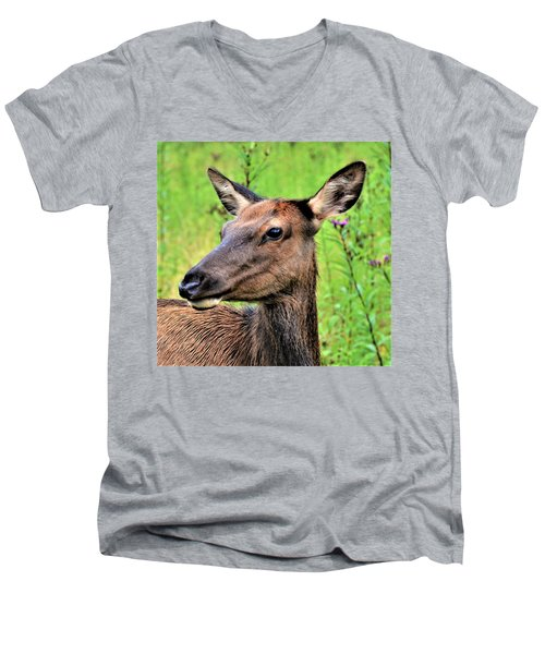 Attentive Yearling Men's V-Neck T-Shirt