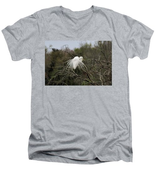 Attractive Plumage Men's V-Neck T-Shirt