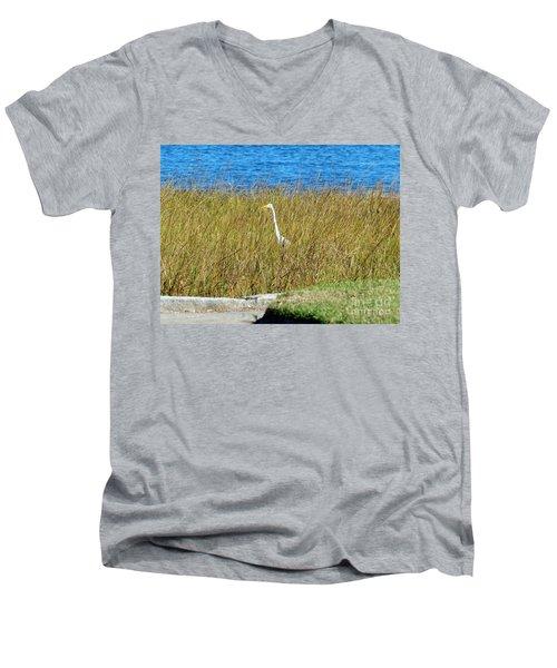 Audubon Park Sighting Men's V-Neck T-Shirt