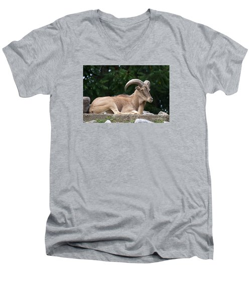 Auodad 20120714_80a Men's V-Neck T-Shirt