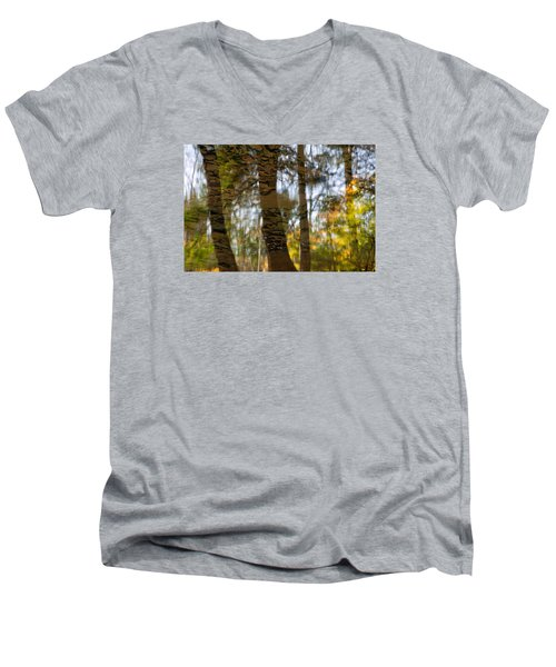 Autumn Abstract Men's V-Neck T-Shirt