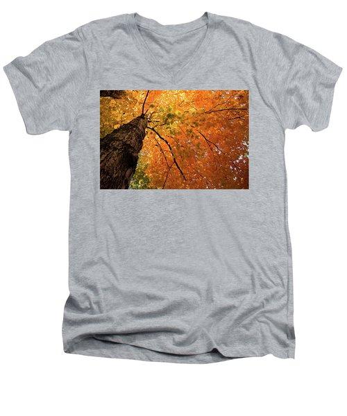 Autumn Canopy In Maine Men's V-Neck T-Shirt