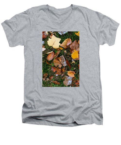 Autumn Carpet 001 Men's V-Neck T-Shirt