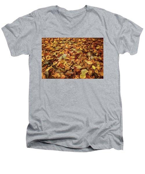 Autumn Carpet Men's V-Neck T-Shirt by Vittorio Chiampan
