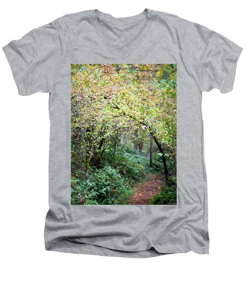 Autumn Colors In The Forest Men's V-Neck T-Shirt