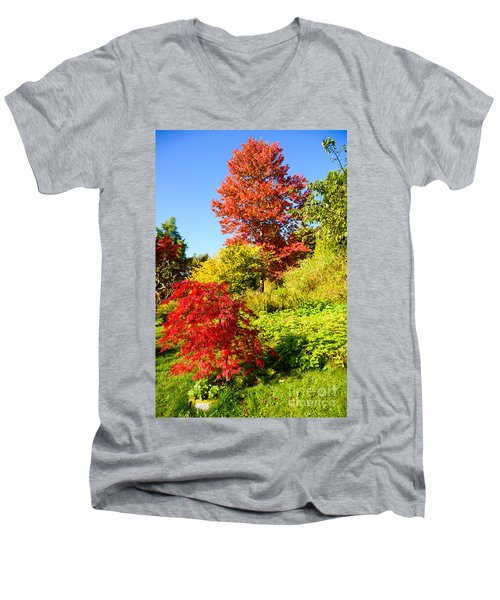 Men's V-Neck T-Shirt featuring the photograph Autumn Colours by Colin Rayner