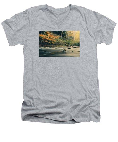 Autumn Dreamscape Men's V-Neck T-Shirt