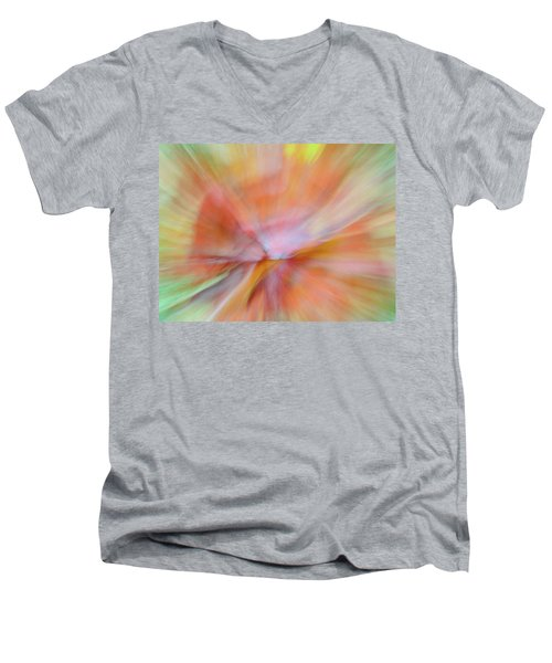 Autumn Foliage 13 Men's V-Neck T-Shirt
