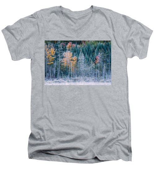Autumn Frost Men's V-Neck T-Shirt