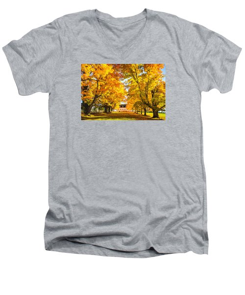 Men's V-Neck T-Shirt featuring the photograph Autumn Gold IIi by Robert Clifford