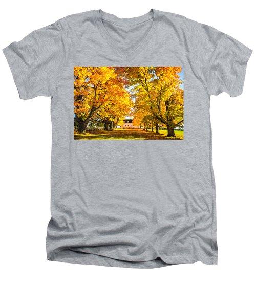 Autumn Gold IIi Men's V-Neck T-Shirt