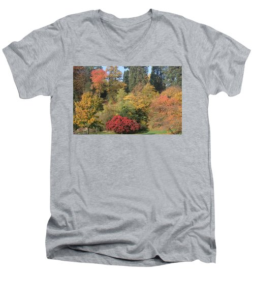 Autumn In Baden Baden Men's V-Neck T-Shirt