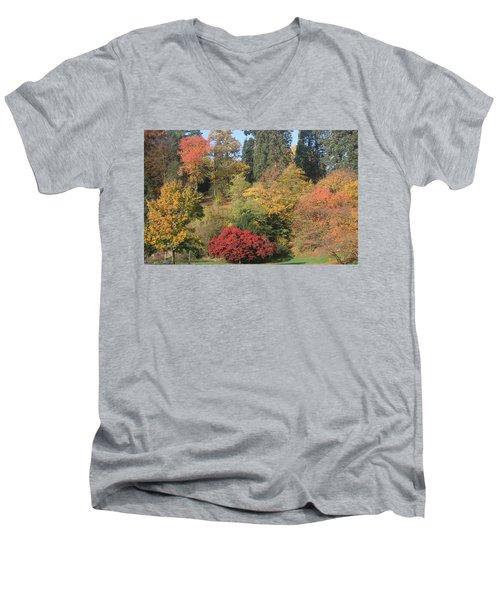 Autumn In Baden Baden Men's V-Neck T-Shirt