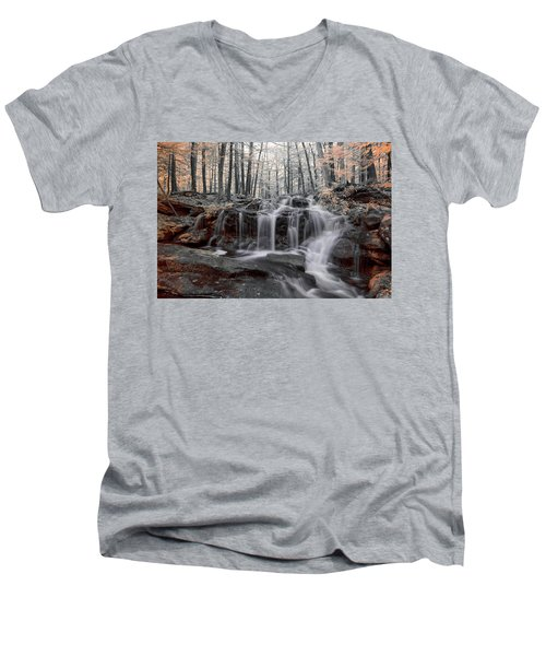 Autumn In Spring Infrared Men's V-Neck T-Shirt