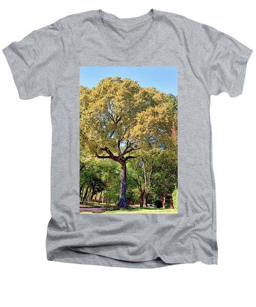 Autumn In Summer Men's V-Neck T-Shirt by Joan Bertucci