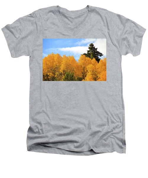 Autumn In The Owyhee Mountains Men's V-Neck T-Shirt