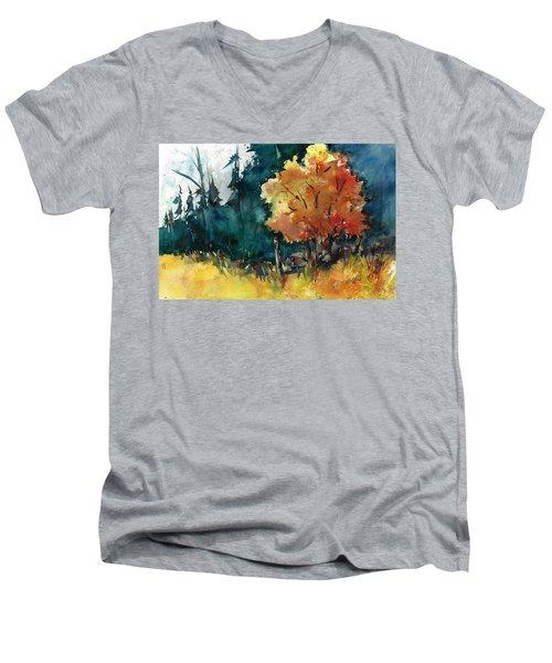 Autumn In The Ozarks Men's V-Neck T-Shirt