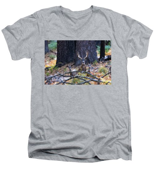 Men's V-Neck T-Shirt featuring the photograph Autumn In The Yosemite High Country by Vincent Bonafede