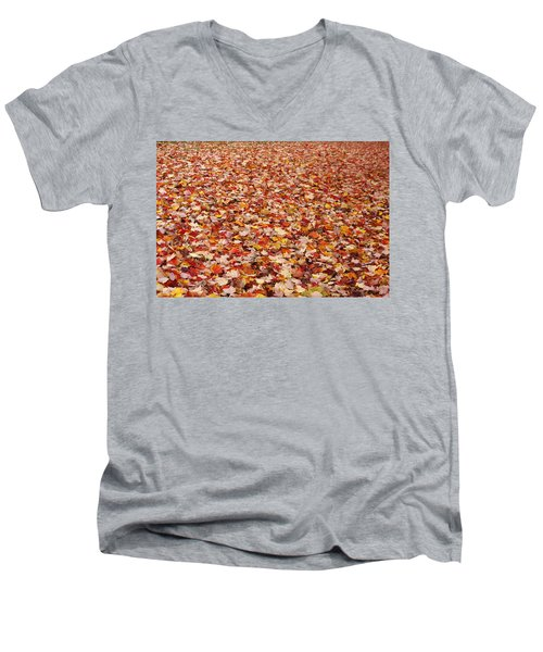 Autumn Leaves Men's V-Neck T-Shirt by Marilyn Wilson