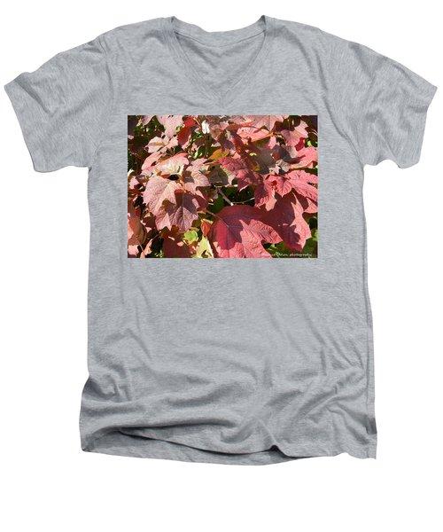 Autumn Leaves Men's V-Neck T-Shirt by Nance Larson
