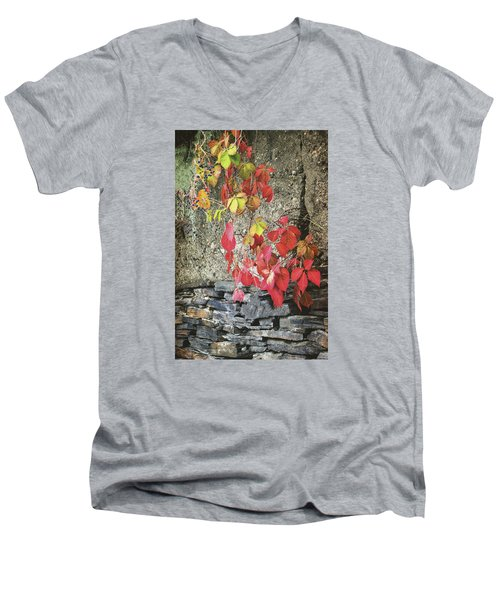 Men's V-Neck T-Shirt featuring the photograph Autumn Leaves by Tom Singleton