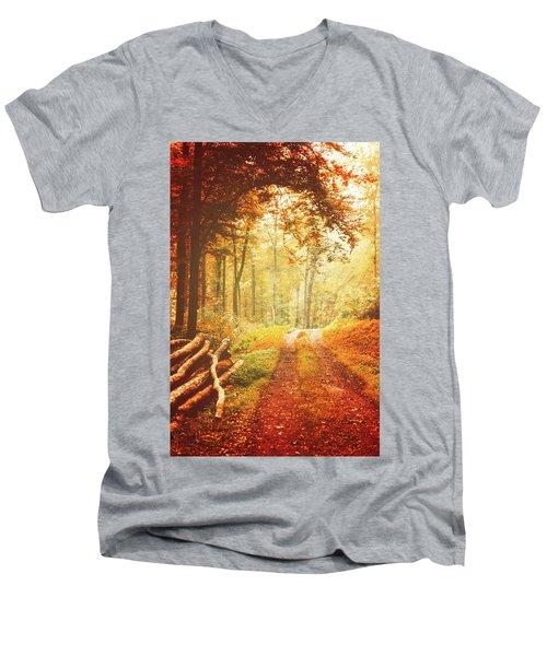 Autumn Lights Men's V-Neck T-Shirt