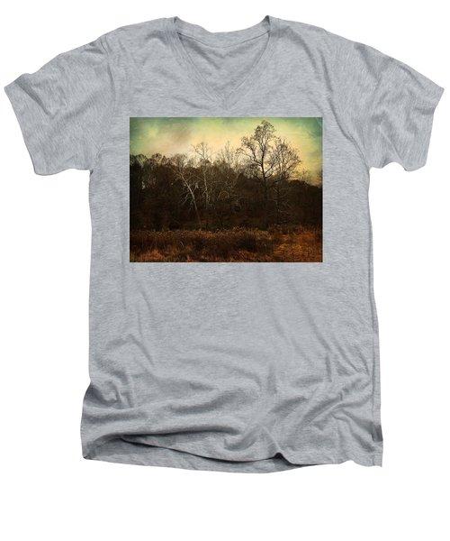 Autumn Majesty  Men's V-Neck T-Shirt