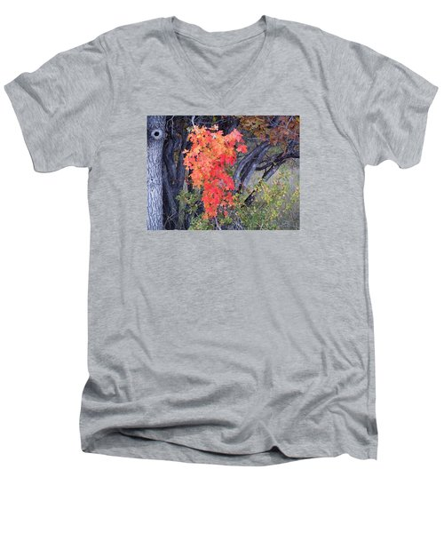 Autumn Oak Leaves Men's V-Neck T-Shirt