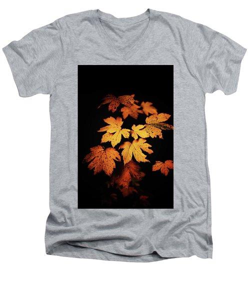 Autumn Photo Men's V-Neck T-Shirt