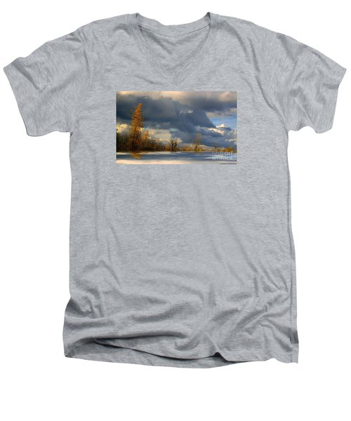 Autumn Skies  Men's V-Neck T-Shirt by Elfriede Fulda
