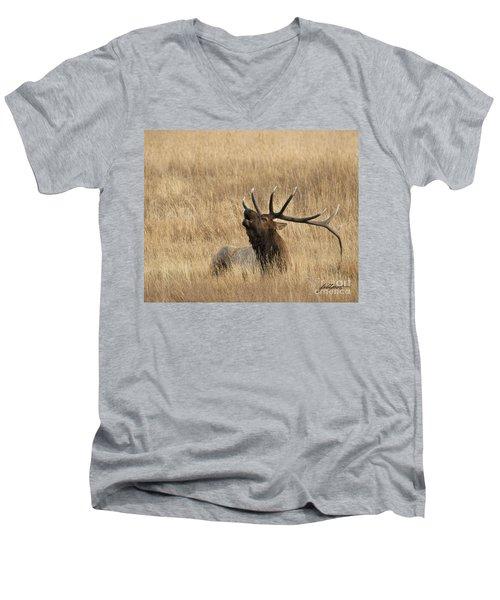 Autumn Song Men's V-Neck T-Shirt