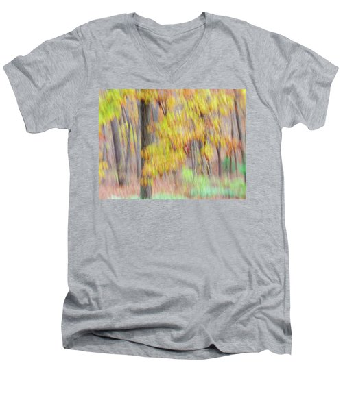 Autumn Splendor Men's V-Neck T-Shirt by Bernhart Hochleitner